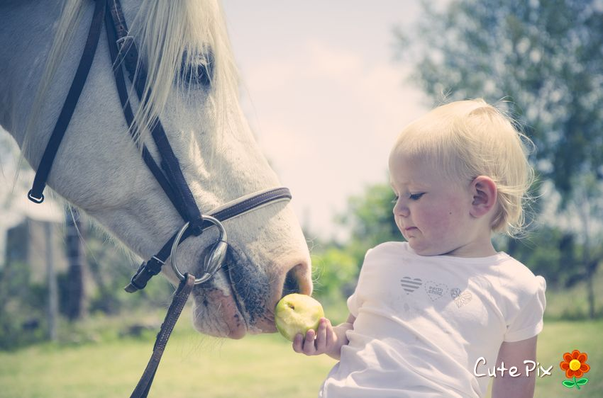 Horse styled kiddies shoot