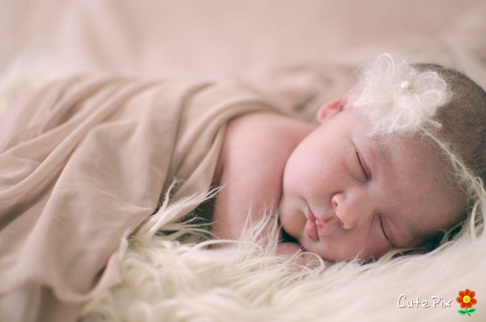 Newborn photographer port elizabeth
