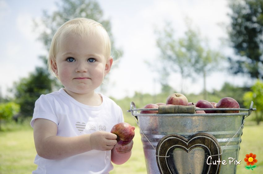Apples styled shoot